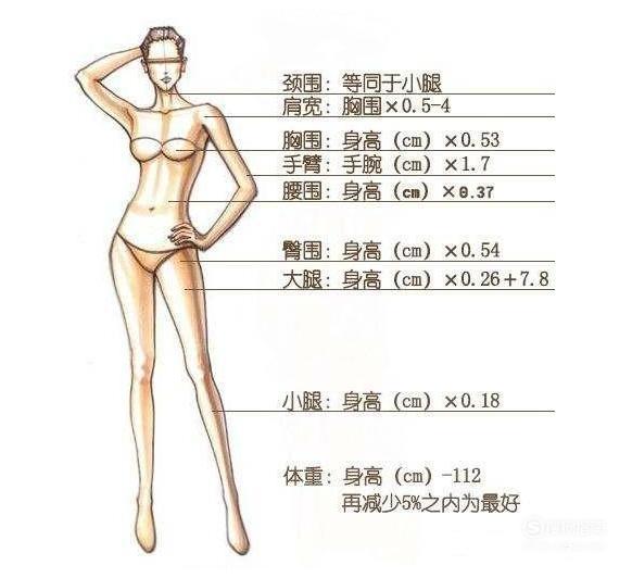 女生标准身材的黄金比例