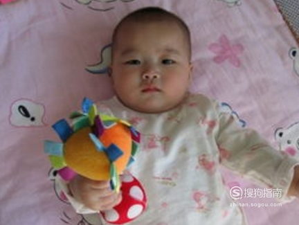 宝宝出生的第6个月