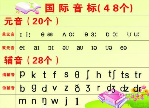 48个英语音标怎么读