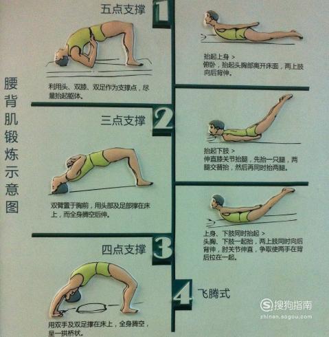 腰背肌锻炼方法