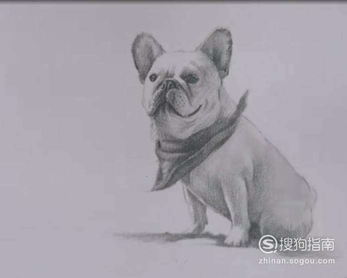 如何画狗素描画